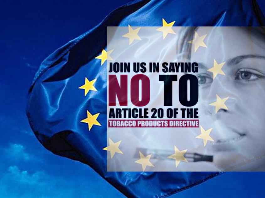 article 20 eu flag