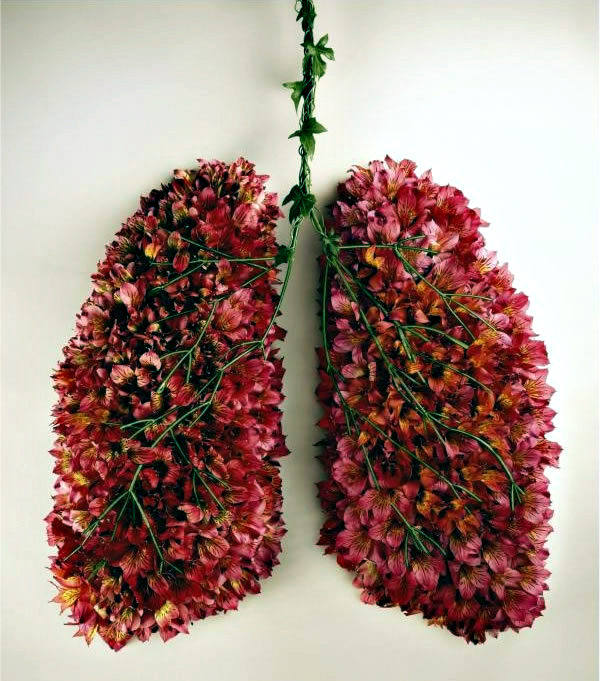 flower-lungs